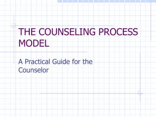 THE COUNSELING PROCESS MODEL