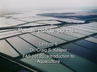 Ponds, ponds, ponds...