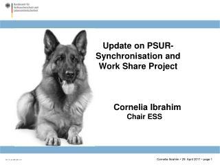 Cornelia Ibrahim Chair ESS