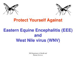 Protect Yourself Against Eastern Equine Encephalitis (EEE) and West Nile virus (WNV)