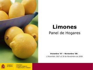 Limones Panel de Hogares
