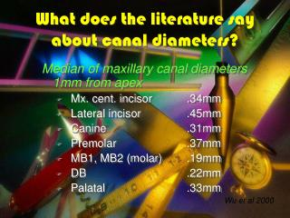 What does the literature say about canal diameters?