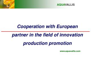 Cooperation with European partner in the field of innovation production promotion