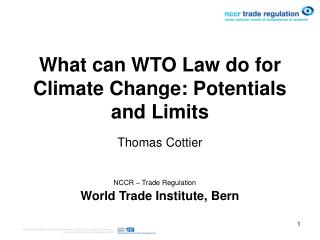 What can WTO Law do for Climate Change: Potentials and Limits