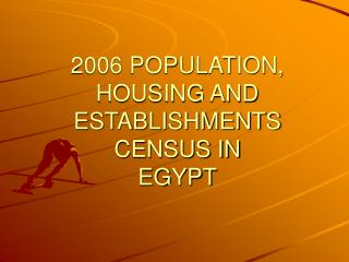 2006 POPULATION,  HOUSING AND ESTABLISHMENTS CENSUS IN  EGYPT