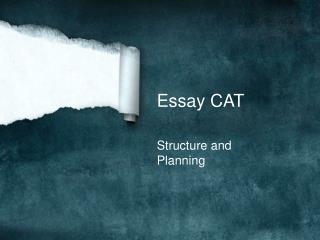 Essay CAT