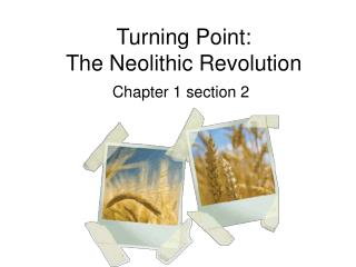 Turning Point: The Neolithic Revolution