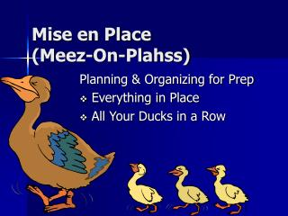 Mise en Place (Meez-On-Plahss)