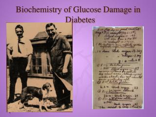 Biochemistry of Glucose Damage in Diabetes