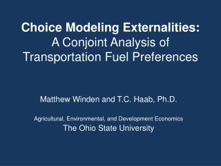 Choice Modeling Externalities: A Conjoint Analysis of Transportation Fuel Preferences