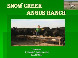 SNOW CREEK                 ANGUS RANCH