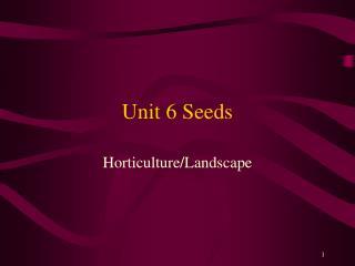 Unit 6 Seeds