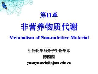 非营养物质代谢