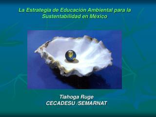 La Estrategia de Educaci n Ambiental para la Sustentabilidad en M xico