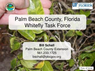 Palm Beach County, Florida Whitefly Task Force