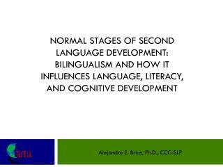 Alejandro E. Brice, Ph.D., CCC-SLP
