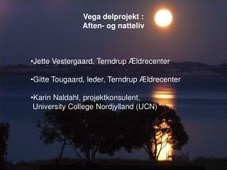 Vega delprojekt : Aften- og natteliv