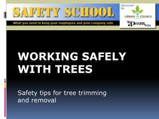 Working safely with trees