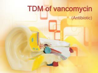 TDM of vancomycin