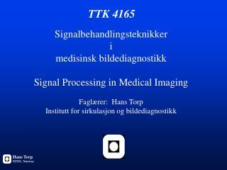 TTK 4165