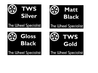 TWS Silver