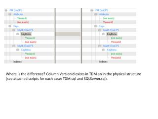 Where is the difference? Column VersionId exists in TDM an in the physical structure