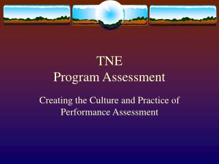 TNE Program Assessment