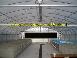 Lecture 5: Supply and Demand