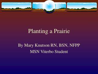 Planting a Prairie