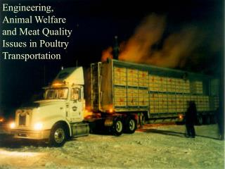 Engineering, Animal Welfare and Meat Quality Issues in Poultry Transportation