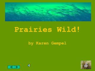 Prairies Wild!
