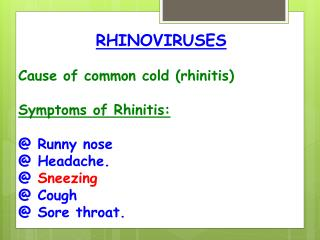 The common cold or rhinitis essay