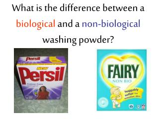 What is the difference between a  biological  and a  non-biological  washing powder?