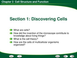 Section 1: Discovering Cells