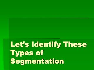 Let's Identify These Types of Segmentation
