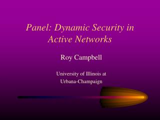 Panel: Dynamic Security in  Active Networks