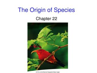 The Origin of Species Chapter 22