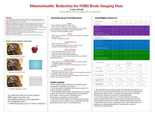 Dimensionality Reduction for fMRI Brain Imaging Data