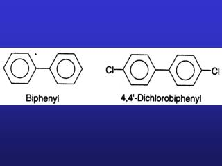 PCBs --Polychlorinated biphenyl (a pair of benzene rings joined by a single carbon-to-carbon bone.
