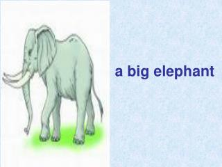 a big elephant