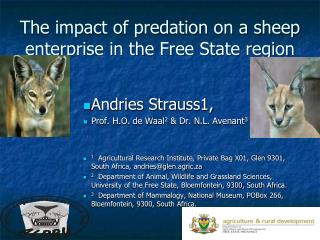 The impact of predation on a sheep enterprise in the Free State region
