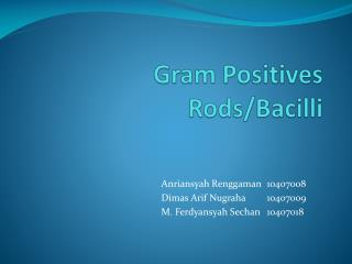 Gram Positives Rods/Bacilli