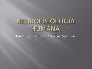 Funcionamiento del Sistema Nervioso