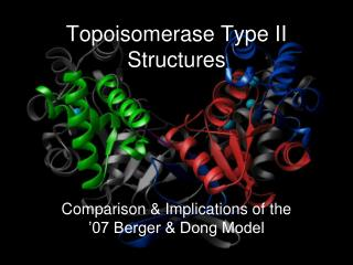 Topoisomerase Type II Structures