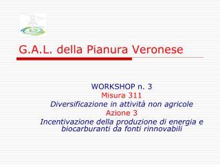 G.A.L. della Pianura Veronese