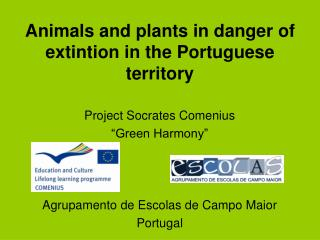 Animals and plants in danger of extintion in the Portuguese territory