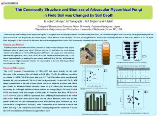 The  Community Structure and Biomass of Arbuscular Mycorrhizal Fungi