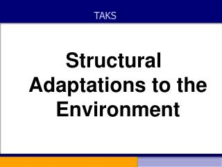 Structural Adaptations to the Environment