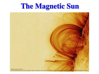 The Magnetic Sun