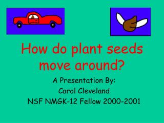 How do plant seeds move around?